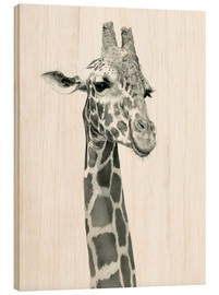 Ashley Verkamp - Sketch Of A Smiling Giraffe