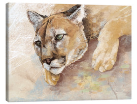 Lienzo  Captived Mountain Lion - Ashley Verkamp