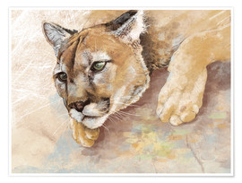 Póster Captived Mountain Lion