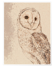 Póster  Endearing Barn Owl - Ashley Verkamp