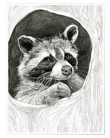 Póster Raccoon In A Hollow Tree Sketch