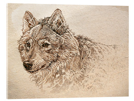 Cuadro de metacrilato  The Gray Wolf - Ashley Verkamp