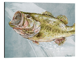 Cuadro de aluminio  Magnificent Largemouth Bass - Ashley Verkamp
