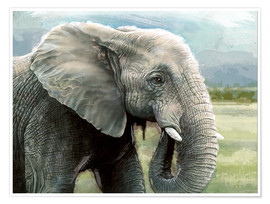 Póster  African Elephant In The Savanna Wilds - Ashley Verkamp