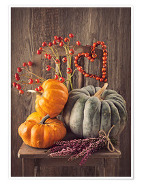 Póster Still life with the pumpkins