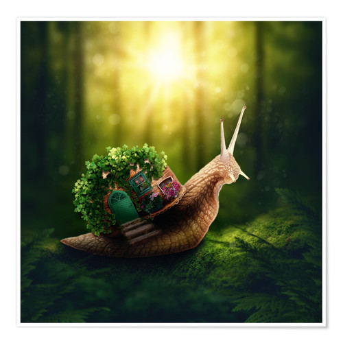 Póster Snail in the magic forest