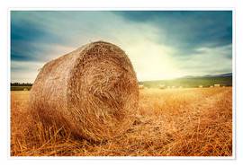 Póster Straw bales