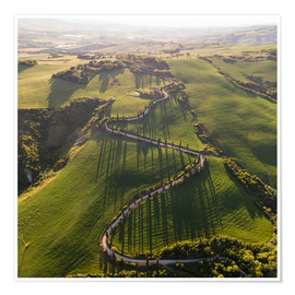 Póster Aerial view of winding road in Tuscany, Italy