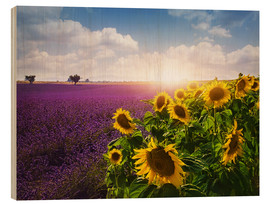 Cuadro de madera  Lavender and sunflowers fields , Provence - Elena Schweitzer