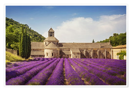 Póster  Senanque Abbey with lavender fields - Elena Schweitzer