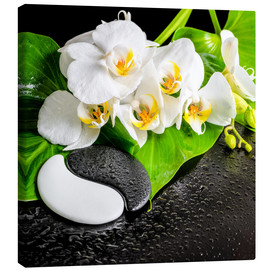 Lienzo  Spa arrangement with white orchid