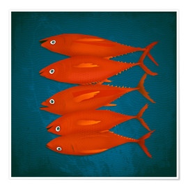 Póster red fish