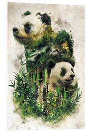Cuadro de metacrilato  The Giant Panda - Barrett Biggers