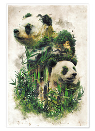 Póster  The Giant Panda - Barrett Biggers