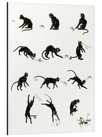 Cuadro de aluminio  The cat and the frog - Théophile-Alexandre Steinlen