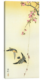 Lienzo  Starlings and Cherry Tree - Ohara Koson