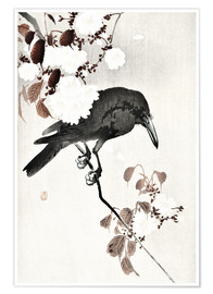 Póster Crow and Cherry Blossoms