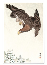Póster  Eagle in Flight - Ohara Koson