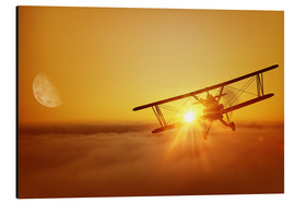 Cuadro de aluminio  Biplane flies towards the sun