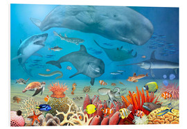 Forex  Animals in the sea - Marion Krätschmer