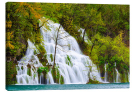 Lienzo  Spring at the waterfalls of Plitvice - Moqui, Daniela Beyer