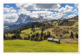 Póster Summer on the Alpe di Siusi (South Tyrol, Italy)