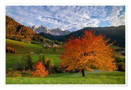 Póster Funes Valley in autumn, Dolomites, South Tyrol, Italy