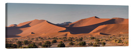 Lienzo  Dune landscape in the Sossusvlei, Namibia - Circumnavigation