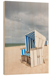 Madera  Seagull and beach chair on Sylt