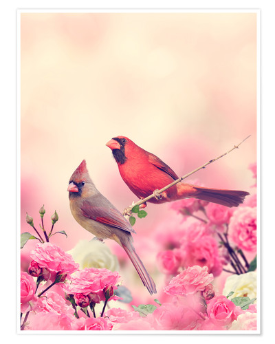 Póster Red cardinal in sea of flowers