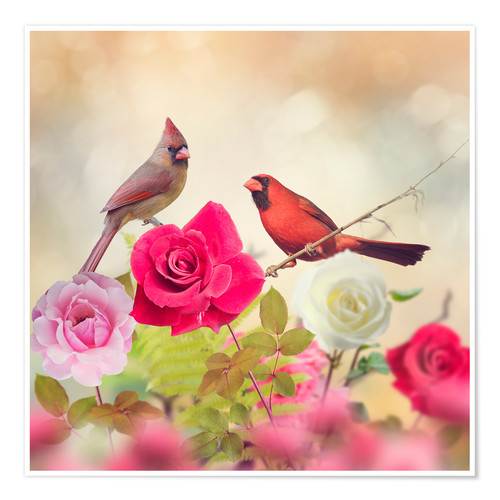 Póster Roses and cardinals