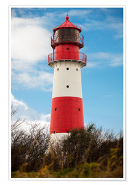 Póster Red lighthouse