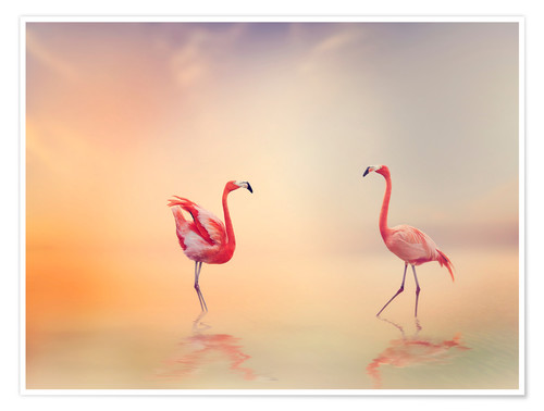Póster Two Flamingoes in The Lake at Sunset