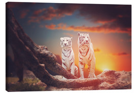 Lienzo  Two white tigers