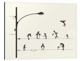 Cuadro de aluminio  PENGUINS ON A WIRE - Jazzberry Blue