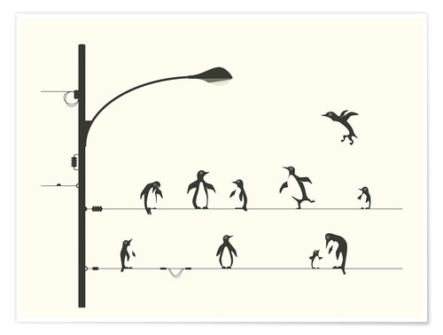 Póster PENGUINS ON A WIRE