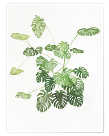 Póster  Monstera - Jennifer McLennan