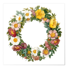 Póster Wreath of wild roses