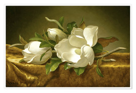 Póster  Magnolias on Gold Velvet Cloth - Martin Johnson Heade