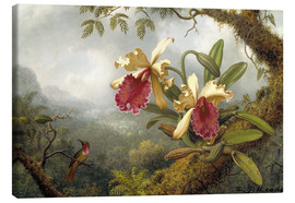 Lienzo  orchids and hummingbird - Martin Johnson Heade