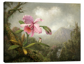 Lienzo  Orchid and Hummingbird - Martin Johnson Heade