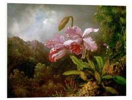 Martin Johnson Heade - Orchids in a Jungle