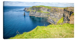 Lienzo  The famous Cliffs of Moher in Ireland