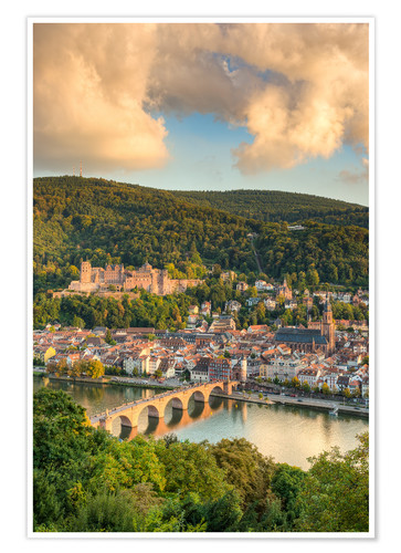Póster Heidelberg in the evening sun