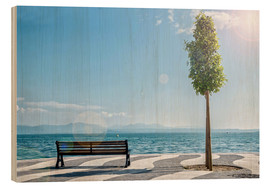Madera  Shore of Lake Garda with Alps on the horizon