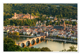 Póster  View of the Old Town of Heidelberg from the Philosophenweg - Michael Valjak