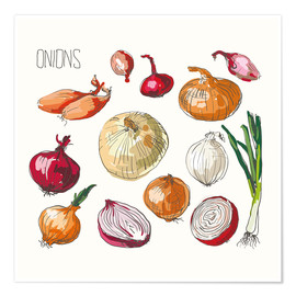 Póster  Onions collage