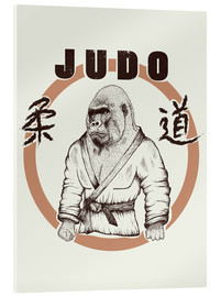 Metacrilato  Judo Art