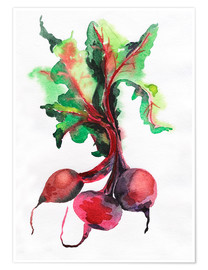 Póster  Radish watercolor