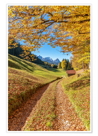 Póster  Golden autumn in Bavaria - Achim Thomae